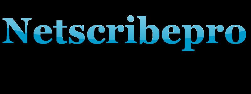 Netscribepro
